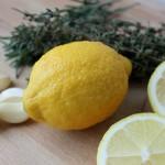Saltdejsindbagt Citronkylling